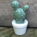 cactus pot N4 D6xH11 deco