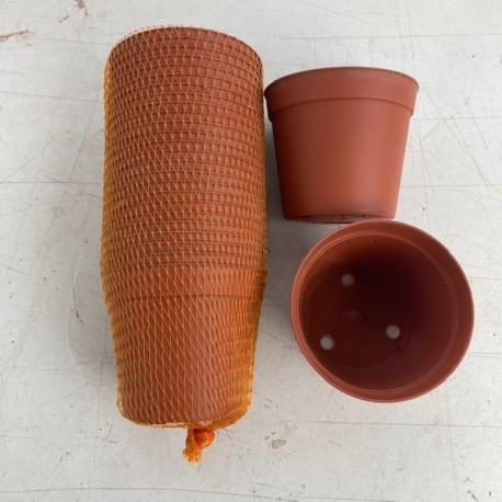 pot plastique de diamètre 7.5 cm (les 25)